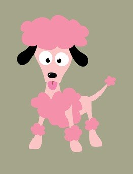 pink poodle with black ears standing up