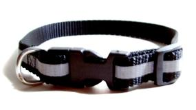 puppy collars white and blue dog collar